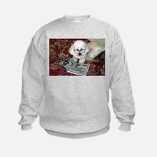 You just Gotta Love a Bichon  Sweatshirt