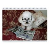 Bichon Wall Calendars