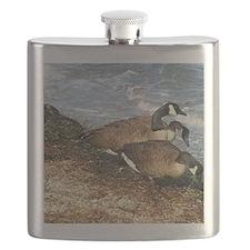 cape cod beach combers Flask