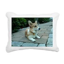 IMG00074-20100603-1949 Rectangular Canvas Pillow