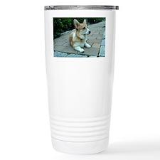 IMG00074-20100603-1949 Travel Mug