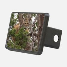 2-Baby Bobcat 860 Hitch Cover