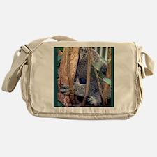 2-Koko 161a Messenger Bag