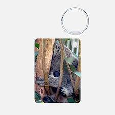 2-Koko 161a Keychains