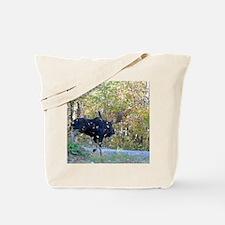 9x12_print 3 Tote Bag