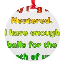 My_Dog_Is_Neutered Ornament