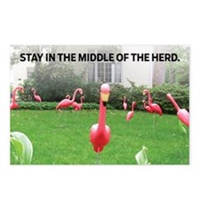 Stay in the Middle of the Postcards (Package of 8)