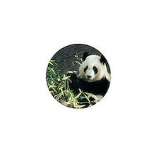 panda2 Mini Button