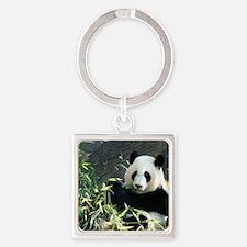 panda2 Square Keychain
