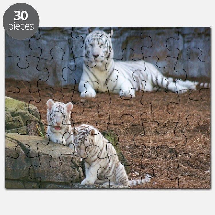IMG_3748 Puzzle
