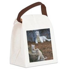 IMG_3748 Canvas Lunch Bag