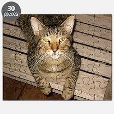 IMG_0643 Puzzle