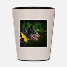 _DRS3402 Shot Glass