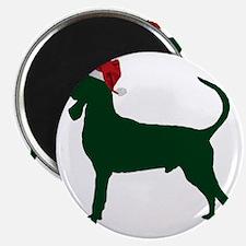Black-&-Tan-Coonhound23 Magnet