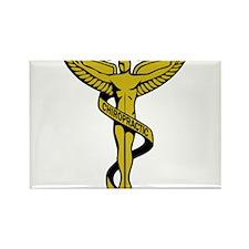 Chiropractic Symbol Magnets