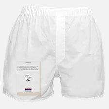 PreambleBackCover Boxer Shorts