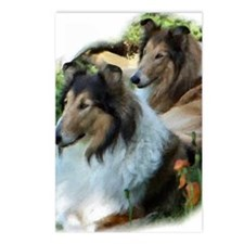 Two Sable Rough Colies Postcards (Package of 8)