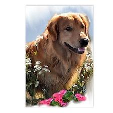 Golden Retriever Art Postcards (Package of 8)