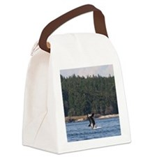 IMG_7675 Canvas Lunch Bag