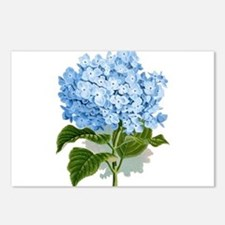 Blue hydrangea flowers Postcards (Package of 8)