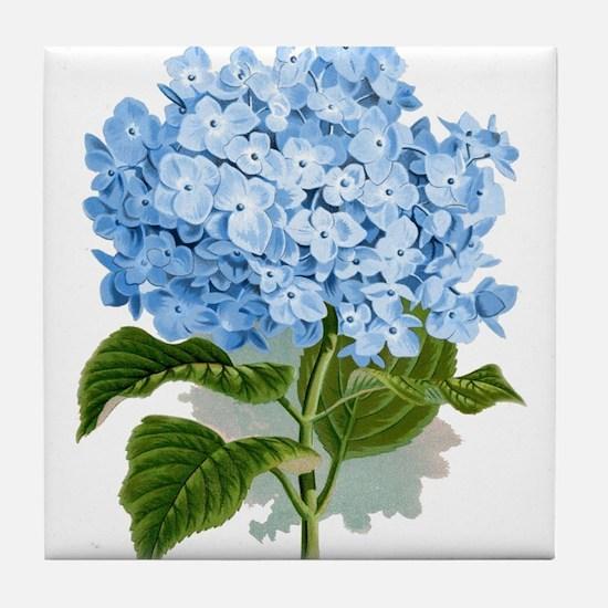 Blue hydrangea flowers Tile Coaster