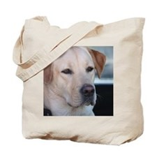 0 cover pets 521 Tote Bag