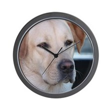 0 cover pets 521 Wall Clock