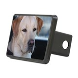 Labrador retriever Rectangle