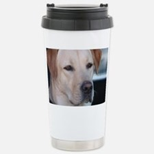 0 cover pets 521 Stainless Steel Travel Mug