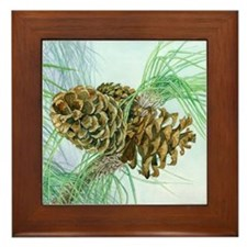 Pine Cones Framed Tile