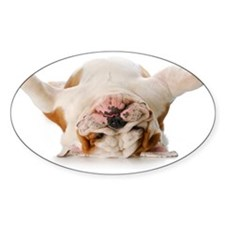0 Cover - _dsc8294_bulldog_puppy_up Decal