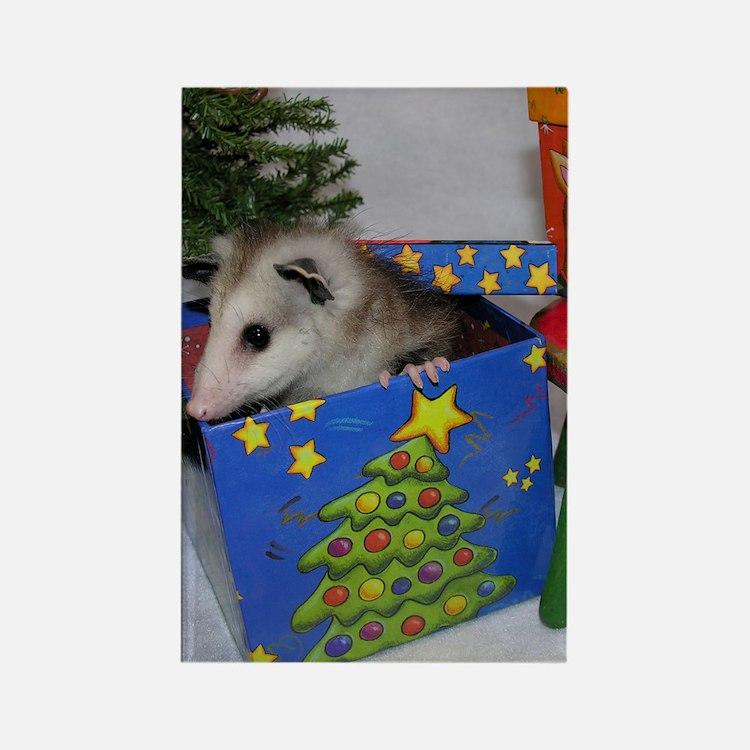 Opossum Christmas Present Rectangle Magnet