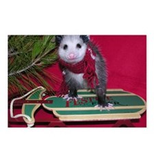 Possum on Christmas sled Postcards (Package of 8)