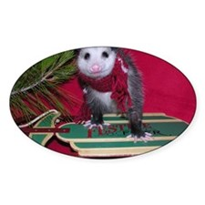Possum on Christmas sled Decal