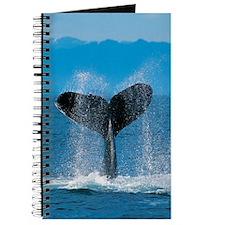 whale tall Journal