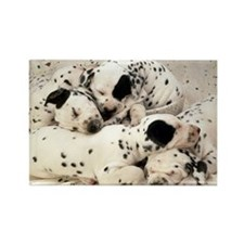 Dalmation puppy pile Rectangle Magnet