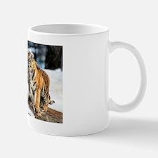 Tiger Cubs Three Mug