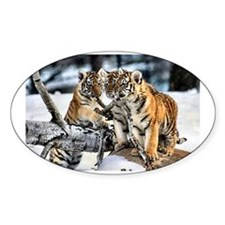 Tiger Cubs Three Decal