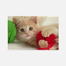 Yarn Kitty lg fr print Rectangle Magnet