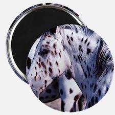 Horse Spot pillow Magnet