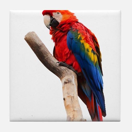 scarlet macaw peace love Tile Coaster