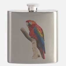 scarlet macaw peace love Flask