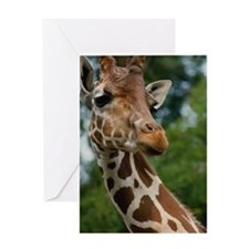 Giraffe Art Greeting Card