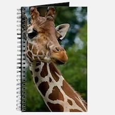 Giraffe Art Journal