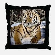 siberian tiger art Throw Pillow