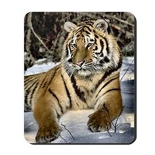 siberian tiger art Mousepad
