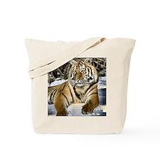 siberian tiger art Tote Bag
