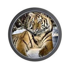 siberian tiger art Wall Clock