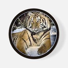 siberian tiger art Wall Clock