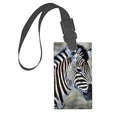 Zebra Art Luggage Tag